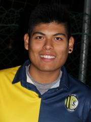 Aedo Carlos Junior
